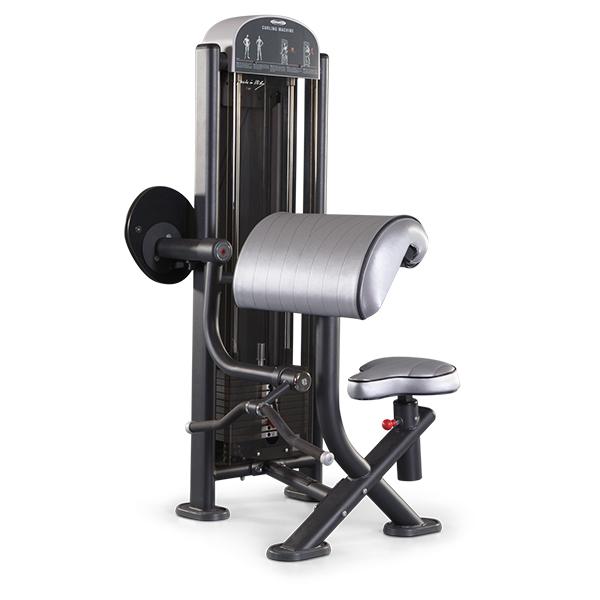 Panatta Fit Evo Curling Machine 1FE051